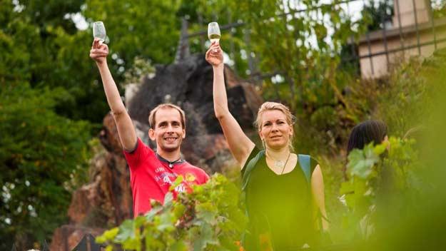 Vinobraní v trojské botanické zahradě nabízelo vlastní vína