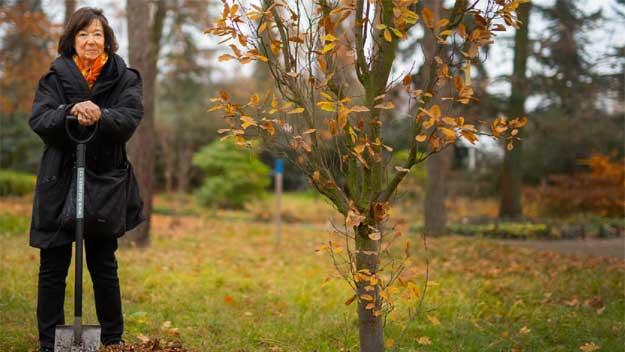 Jubilejní 100. strom byl vysazen za Tomáše Garrigue Masaryka