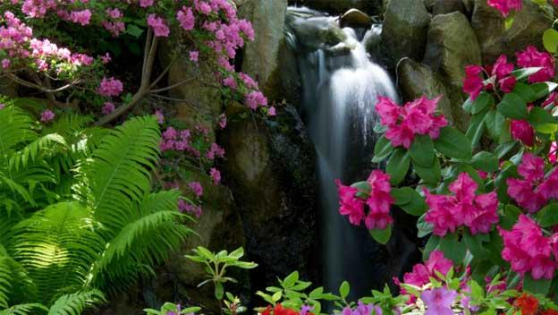 Trojská botanická zahrada ožije díky vodě z Vltavy