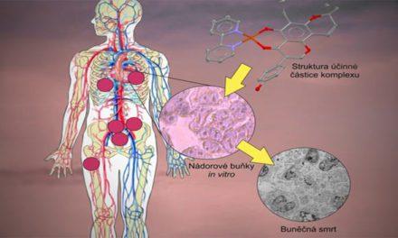 Olomoučtí vědci vyvinuli látky, které ničí nádorové buňky