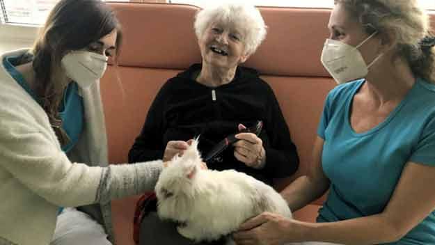 V SeniorCentrech pomáhají léčit zvířecí přátelé